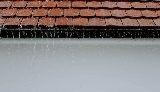 Råd och hjälp för ett friskt tak